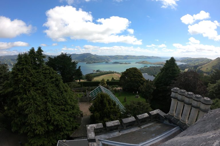 My Days in New Zealand Week 1