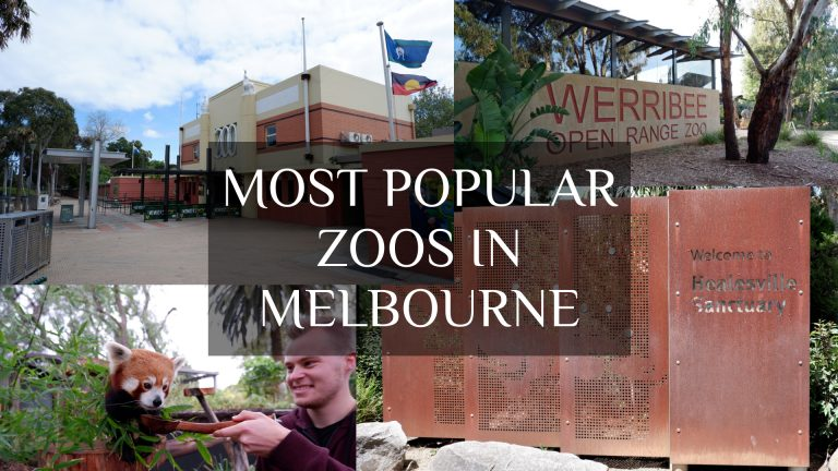 Most popular zoos in Melbourne